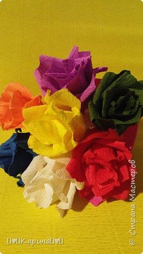 Здравствуйте! Это моя вторая работа! Решила опять сделать розы, но не просто розы а цветные розы) Для конкурса (еще раз): Я Карина, мне 14 лет, технику незнаю. фото 3