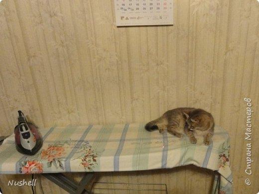 Сегодня наводила порядок в компе и собрала в отдельную папку фотографии своих кошек, которые жили у меня в недалёком прошлом. Такая накатила ностальгия, хоть плачь...Все эти мои любимки ушли в разное время в результате естественного отбора- где машина, где собаки, где возраст, где просто- ушёл и не вернулся. Сейчас у меня нет никого, кошки только на душе иногда скребутся. Без кошек и я сама изменилась, стала жёстче, что ли... Сердце-то отогреть могли только они. Этот пост хочу оставить себе на память, ну и вас приглашаю поглазеть. Обещаю- хоть и грущу сама, но вас постараюсь улыбнуть.  Итак, моё чёрное чудо с бирюзовыми глазами- кот Тимоха. Был снят  месячным, если не меньше, с берёзы, где он сидел под проливным холодным дождём двое суток и жалобно пищал. Слышали этот писк, но никак не могли определить, откуда он раздаётся. И вот я утром пошла на работу, уже опаздывала. Опять где-то пищит. Проходя мимо берёз, мне как будто какой-то голос подсказал: посмотри наверх! Боже, как он туда залез, такой малюська с ладошку? Нафиг работу, побежала будить мужа: вставай, говорю, бери стремянку, пошли! Куда, куда- ребёнка спасать! Ну, на работу я опоздала аж на час, ведь надо было помыть мелкого тёплой водичкой- замёрз и дрожал. Потом закутать в тёплый шарфик, уложить в мягкое кресло. Потом найти подобие лотка-туалета, приготовить мисочку, отдать мужу приказы по уходу до моего возвращения... Но опоздание мне простили после моего рассказа об этом случае. Тимоха вырос в шикарного брюнета и ловеласа- пел серенады на улице так громко, что было слышно на весь квартал. фото 16