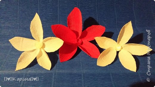 Здравствуйте!  Для конкурса: Я Карина, мне 14, технику не знаю, но что это за цветы тоже не знаю... Может лотос... Руки сами делали! фото 2