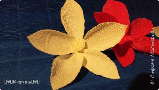 Здравствуйте!  Для конкурса: Я Карина, мне 14, технику не знаю, но что это за цветы тоже не знаю... Может лотос... Руки сами делали! фото 3