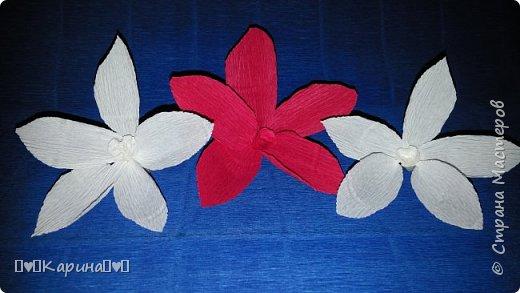 Здравствуйте!  Для конкурса: Я Карина, мне 14, технику не знаю, но что это за цветы тоже не знаю... Может лотос... Руки сами делали! фото 1