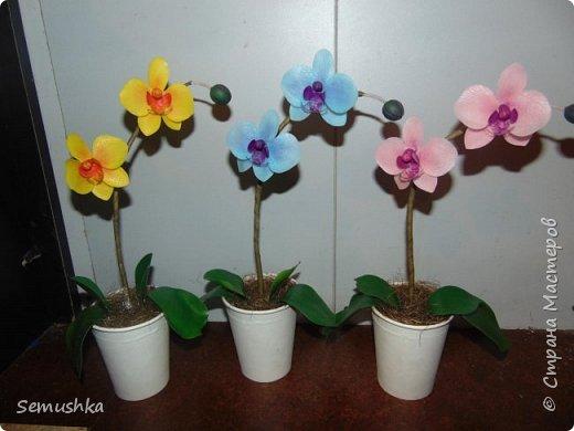 """Такие орхидейки слепила коллегам """"на прощание""""...."""