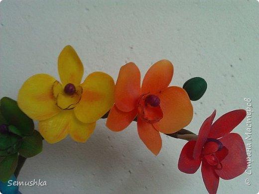 "Такие орхидейки слепила коллегам ""на прощание"".... фото 3"