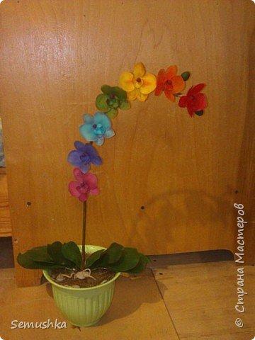 "Такие орхидейки слепила коллегам ""на прощание"".... фото 7"