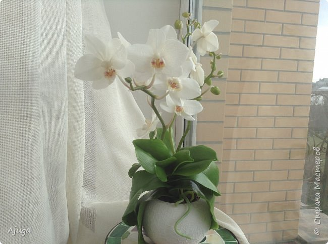 Орхидея фаленопсис из холодного фарфора. фото 2