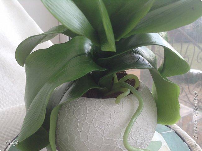 Орхидея фаленопсис из холодного фарфора. фото 4