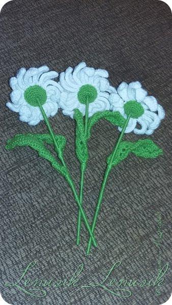 """Привет всем! Наконец-то сдаю свою работу на конкурс """"Мои любимые цветы"""". Мне 13 лет. Техника: вязание крючком. фото 3"""