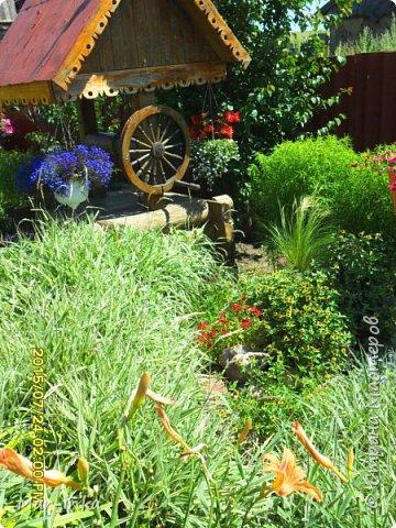 """Да,да о нём, о любимом саде! Добрый день Мастера и Мастерицы! Не за горами новый """"полевой"""" сезон, а значит пора готовиться к новым композициям в саду! Какие же это приятные хлопоты! фото 15"""