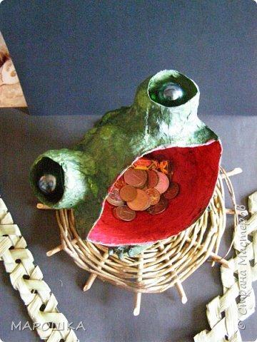 Очаровашка Жаба.. фото 1