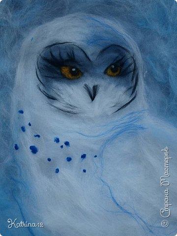 Найра - повелительница снежных просторов. Полярная сова- одна из самых красивых и необыкновенных птиц на земле.  фото 3