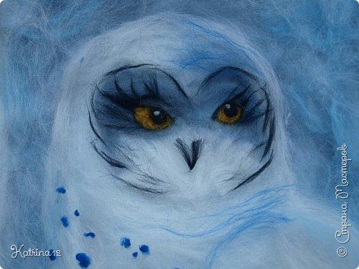 Найра - повелительница снежных просторов. Полярная сова- одна из самых красивых и необыкновенных птиц на земле.  фото 2