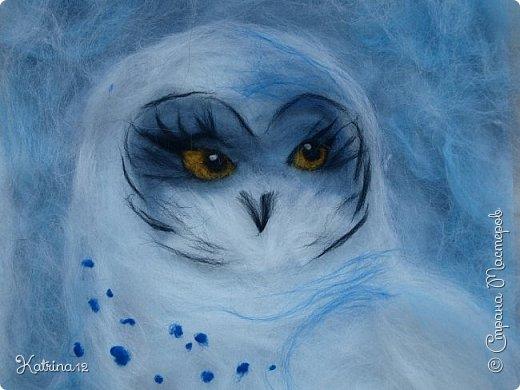 Найра - повелительница снежных просторов. Полярная сова- одна из самых красивых и необыкновенных птиц на земле.  фото 1