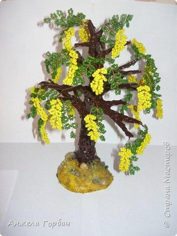 Бисерный сад фото 3