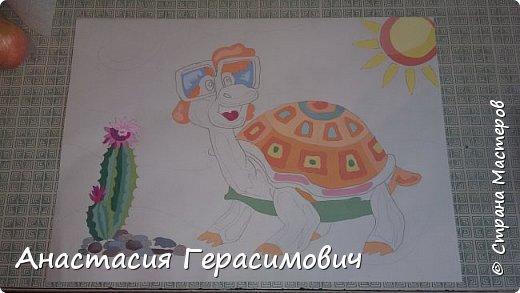 Черепаха фото 5