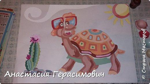 Черепаха фото 6