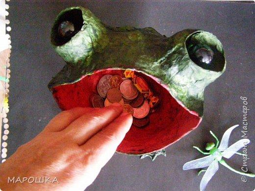 Очаровашка Жаба.. фото 8