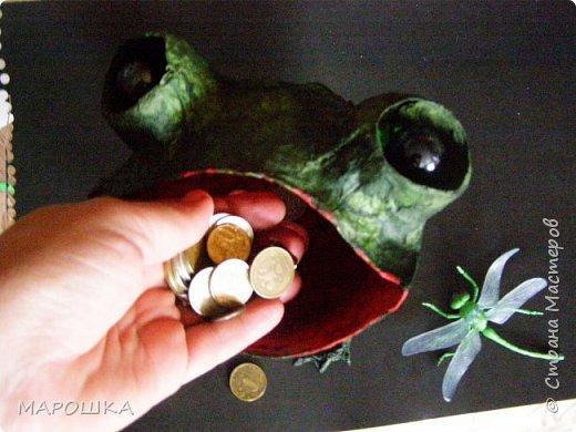 Очаровашка Жаба.. фото 9