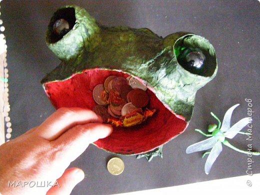Очаровашка Жаба.. фото 10