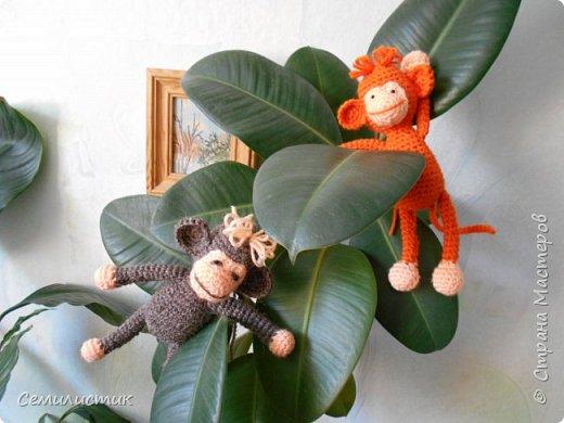 Всем доброе время!!!!  Ну вот... говорят, что по китайскому календарю 2016 год наступает 8февраля.... так что я успела связать себе символ этого года -- обезьянок....  Вот какие весёленькие они получились....  фото 2