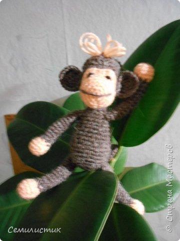 Всем доброе время!!!!  Ну вот... говорят, что по китайскому календарю 2016 год наступает 8февраля.... так что я успела связать себе символ этого года -- обезьянок....  Вот какие весёленькие они получились....  фото 4