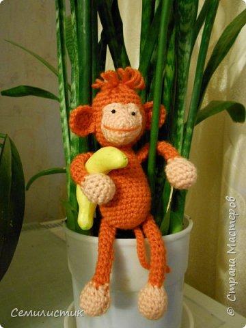 Всем доброе время!!!!  Ну вот... говорят, что по китайскому календарю 2016 год наступает 8февраля.... так что я успела связать себе символ этого года -- обезьянок....  Вот какие весёленькие они получились....  фото 5
