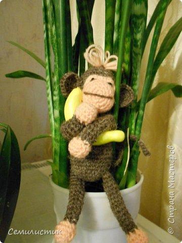 Всем доброе время!!!!  Ну вот... говорят, что по китайскому календарю 2016 год наступает 8февраля.... так что я успела связать себе символ этого года -- обезьянок....  Вот какие весёленькие они получились....  фото 6