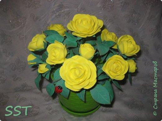 Желтые розы в горшочке. фото 1