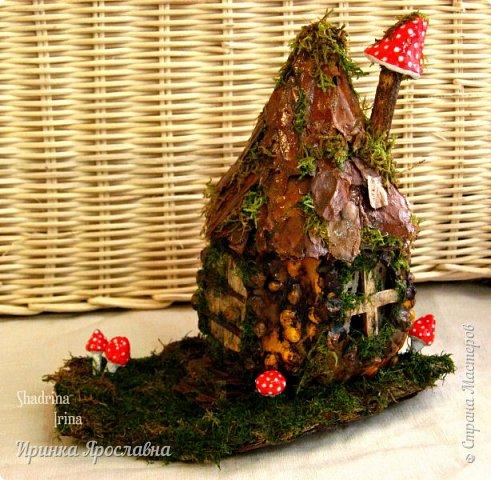 Где-то  в сказочном  лесу стоит мааленький  домик, построенный из  старой тыквочки и живет  в нём  неизвестно кто, то ли гномик, а может мышка Из-за дождиков  покрылся он мхом, рядом растут мухоморчики, но так он кажется еще более сказочным и таинственным! фото 1