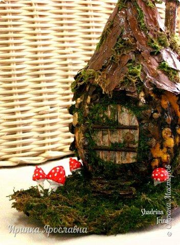 Где-то  в сказочном  лесу стоит мааленький  домик, построенный из  старой тыквочки и живет  в нём  неизвестно кто, то ли гномик, а может мышка Из-за дождиков  покрылся он мхом, рядом растут мухоморчики, но так он кажется еще более сказочным и таинственным! фото 3