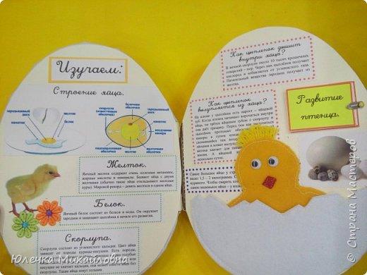 """Здравствуйте дорогие жители Страны мастеров.  А вы знаете что появилось раньше - яйцо или курица? Вопрос конечно философский. А вот такое простое, обычное и привычное яйцо при ближайшем рассмотрении оказывается очень интересным и удивительным.  Вдохновившись опытами и экспериментами, которые показала на своей страничке мама.Вани.и.Маргоши  http://stranamasterov.ru/user/352927 я тоже решила поэкспериментировать со своими детками. Перечитав в интернете множество вариантов домашних опытов, для себя разделила их на группы. А по """"яичной"""" группе решила сделать ещё книжечку, которую как обычно передадим в детский садик. Ну вот, собственно, и сама книжка - в форме яйца. Обложка мягкая, из хлопка, с поролоновой прослойкой. Желток из фетра. фото 2"""
