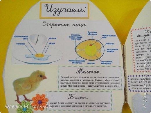 """Здравствуйте дорогие жители Страны мастеров.  А вы знаете что появилось раньше - яйцо или курица? Вопрос конечно философский. А вот такое простое, обычное и привычное яйцо при ближайшем рассмотрении оказывается очень интересным и удивительным.  Вдохновившись опытами и экспериментами, которые показала на своей страничке мама.Вани.и.Маргоши  http://stranamasterov.ru/user/352927 я тоже решила поэкспериментировать со своими детками. Перечитав в интернете множество вариантов домашних опытов, для себя разделила их на группы. А по """"яичной"""" группе решила сделать ещё книжечку, которую как обычно передадим в детский садик. Ну вот, собственно, и сама книжка - в форме яйца. Обложка мягкая, из хлопка, с поролоновой прослойкой. Желток из фетра. фото 3"""