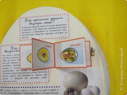 """Здравствуйте дорогие жители Страны мастеров.  А вы знаете что появилось раньше - яйцо или курица? Вопрос конечно философский. А вот такое простое, обычное и привычное яйцо при ближайшем рассмотрении оказывается очень интересным и удивительным.  Вдохновившись опытами и экспериментами, которые показала на своей страничке мама.Вани.и.Маргоши  http://stranamasterov.ru/user/352927 я тоже решила поэкспериментировать со своими детками. Перечитав в интернете множество вариантов домашних опытов, для себя разделила их на группы. А по """"яичной"""" группе решила сделать ещё книжечку, которую как обычно передадим в детский садик. Ну вот, собственно, и сама книжка - в форме яйца. Обложка мягкая, из хлопка, с поролоновой прослойкой. Желток из фетра. фото 5"""