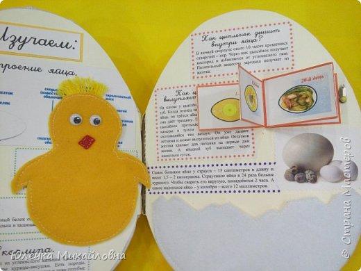 """Здравствуйте дорогие жители Страны мастеров.  А вы знаете что появилось раньше - яйцо или курица? Вопрос конечно философский. А вот такое простое, обычное и привычное яйцо при ближайшем рассмотрении оказывается очень интересным и удивительным.  Вдохновившись опытами и экспериментами, которые показала на своей страничке мама.Вани.и.Маргоши  http://stranamasterov.ru/user/352927 я тоже решила поэкспериментировать со своими детками. Перечитав в интернете множество вариантов домашних опытов, для себя разделила их на группы. А по """"яичной"""" группе решила сделать ещё книжечку, которую как обычно передадим в детский садик. Ну вот, собственно, и сама книжка - в форме яйца. Обложка мягкая, из хлопка, с поролоновой прослойкой. Желток из фетра. фото 6"""