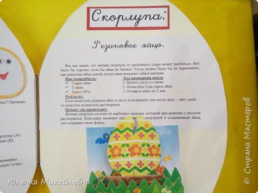 """Здравствуйте дорогие жители Страны мастеров.  А вы знаете что появилось раньше - яйцо или курица? Вопрос конечно философский. А вот такое простое, обычное и привычное яйцо при ближайшем рассмотрении оказывается очень интересным и удивительным.  Вдохновившись опытами и экспериментами, которые показала на своей страничке мама.Вани.и.Маргоши  http://stranamasterov.ru/user/352927 я тоже решила поэкспериментировать со своими детками. Перечитав в интернете множество вариантов домашних опытов, для себя разделила их на группы. А по """"яичной"""" группе решила сделать ещё книжечку, которую как обычно передадим в детский садик. Ну вот, собственно, и сама книжка - в форме яйца. Обложка мягкая, из хлопка, с поролоновой прослойкой. Желток из фетра. фото 22"""