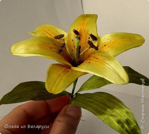 Приветствую всех гостей моего блога! Я уже рассказала как делаю тычинки и пестик для лилий,как окрашиваю лепестки и вот осталось показать сборку цветка. В этом мастер-классе я покажу свои наработки,а также классический пример создания лилий. В лилиях я новичок,только учусь,это мои первые пробы пера и если кто-то найдет что-то полезное для себя,то буду рада! фото 27
