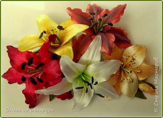 Приветствую всех гостей моего блога! Я уже рассказала как делаю тычинки и пестик для лилий,как окрашиваю лепестки и вот осталось показать сборку цветка. В этом мастер-классе я покажу свои наработки,а также классический пример создания лилий. В лилиях я новичок,только учусь,это мои первые пробы пера и если кто-то найдет что-то полезное для себя,то буду рада! фото 43