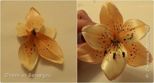 Приветствую всех гостей моего блога! Я уже рассказала как делаю тычинки и пестик для лилий,как окрашиваю лепестки и вот осталось показать сборку цветка. В этом мастер-классе я покажу свои наработки,а также классический пример создания лилий. В лилиях я новичок,только учусь,это мои первые пробы пера и если кто-то найдет что-то полезное для себя,то буду рада! фото 9