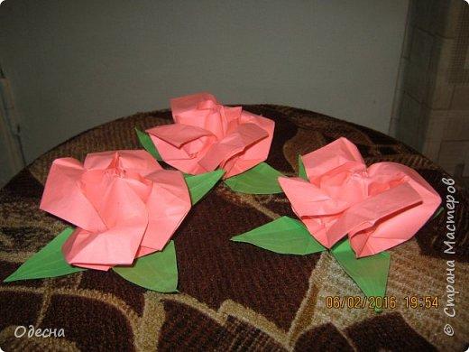 Очень симпатичные рози из бумаги. Схему нашел в кокой то книге по оригами. фото 1