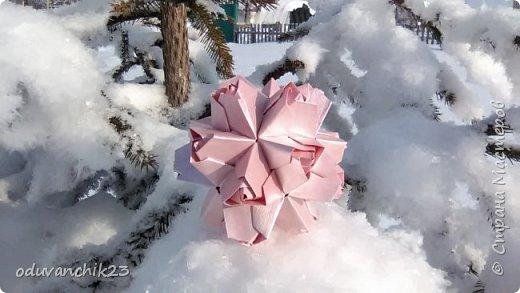 Name: Passiflora Designer: Ekaterina Lukasheva Parts: 30 Paper's size: 7*7 cm Joint: wiht glue Final height:  cm  http://www.kusudama.me/origami/Passiflora#alin2 фото 4