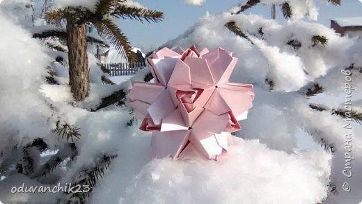 Name: Passiflora Designer: Ekaterina Lukasheva Parts: 30 Paper's size: 7*7 cm Joint: wiht glue Final height:  cm  http://www.kusudama.me/origami/Passiflora#alin2 фото 5