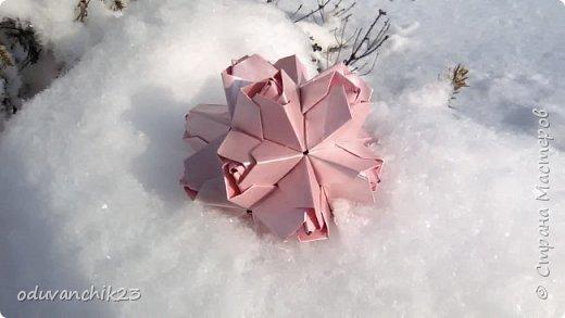 Name: Passiflora Designer: Ekaterina Lukasheva Parts: 30 Paper's size: 7*7 cm Joint: wiht glue Final height:  cm  http://www.kusudama.me/origami/Passiflora#alin2 фото 6