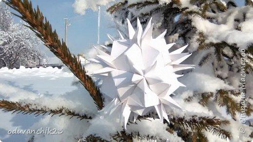 Name: Passiflora Designer: Ekaterina Lukasheva Parts: 30 Paper's size: 7*7 cm Joint: wiht glue Final height:  cm  http://www.kusudama.me/origami/Passiflora#alin2 фото 10