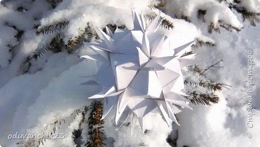 Name: Passiflora Designer: Ekaterina Lukasheva Parts: 30 Paper's size: 7*7 cm Joint: wiht glue Final height:  cm  http://www.kusudama.me/origami/Passiflora#alin2 фото 11