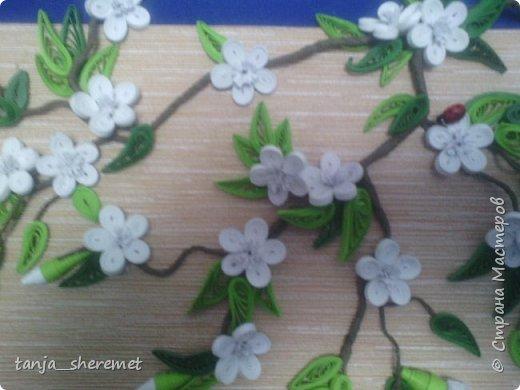 И снова добрый день! Вот такая веточка вишни появилась в моей коллекции по квиллингу. Очень уж весны захотелось!  Спасибо всем мастерам по МК цветущей вишни. фото 3
