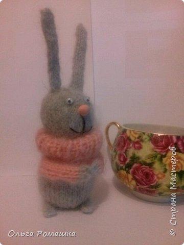 Заяц длинноухий. фото 2