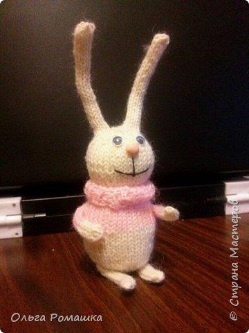 Заяц длинноухий. фото 1