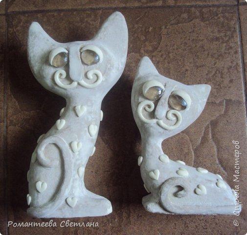 Здравствуйте! Представляю вашему вниманию своих влюблённых котиков. фото 4