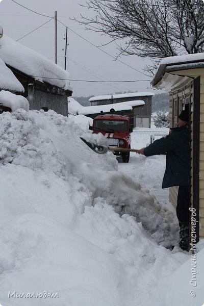 У нас закончились морозы и сразу начался буран и снегопад. фото 3