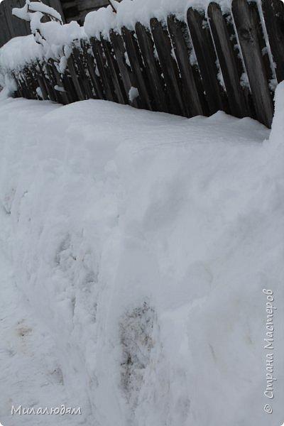 У нас закончились морозы и сразу начался буран и снегопад. фото 7