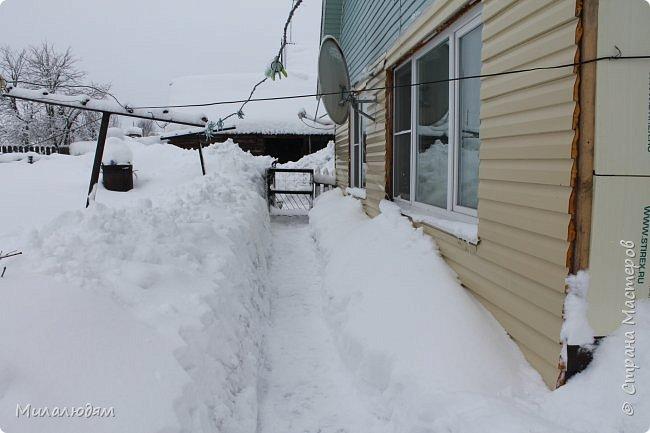 У нас закончились морозы и сразу начался буран и снегопад. фото 8